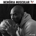 Memória Muscular - Coaching Esportivo - Linhares Coach
