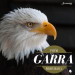 Paixão, Garra e Perseverança - Coaching Esportivo - Linhares Coach