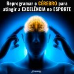 Reprogramar o cérebro para atingir excelência no esporte - Treinamento Mental - Linhares Coach